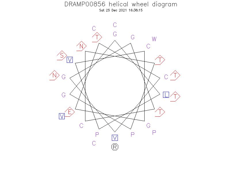 DRAMP00856 helical wheel diagram
