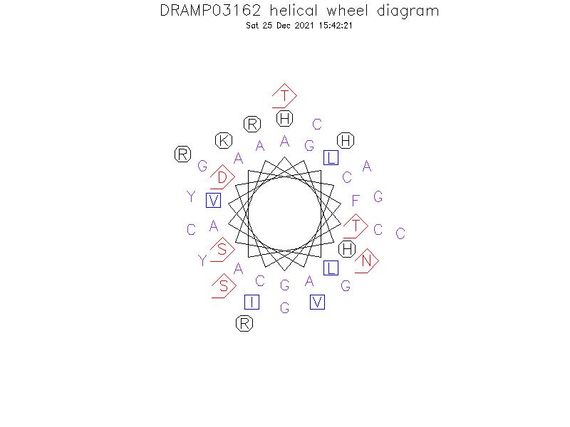 DRAMP03162 helical wheel diagram